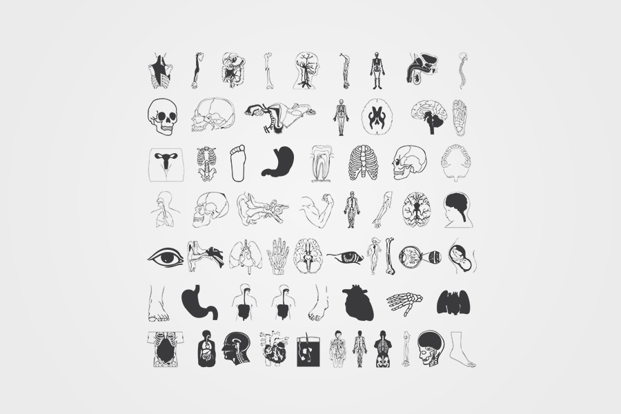 Human-Body-Part-Icons